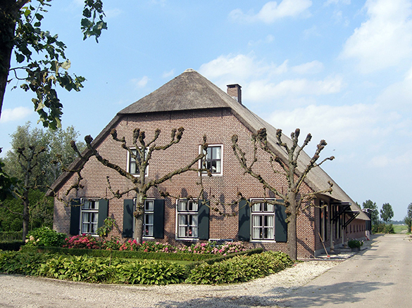 Omgevingsvisie-Omgevingsplan-Erfgoed-Cultuurhistorie-Polders-Rijnenburg-Omgevingswet-2019.jpg
