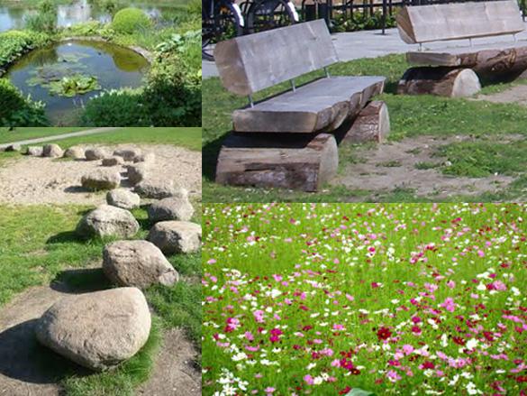 omgevingskwaliteit-tijdelijke-terrein-placemaking-biodiversiteit