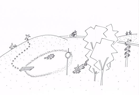 omgevingskwaliteit-tijdelijke-terrein-placemaking-biodiversiteit-paddenpoel