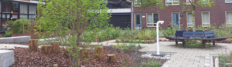 Roerplein biodiversiteit aandachtswijk hitteeiland ruimtelijke ontwikkeling gebiedsontwikkeling plein