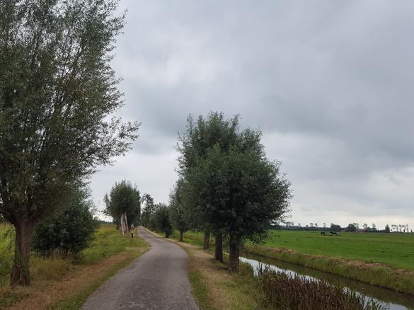 Omgevingsvisie-Omgevingsplan-Knotwilgen-Polderweg-Rijnenburg-Omgevingswet-2019.jpg