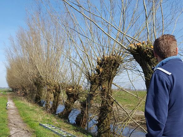 Schuurlab Maatschappelijke Waardecreatie Omgevingsvisie Transformatie Agrarisch Gebied