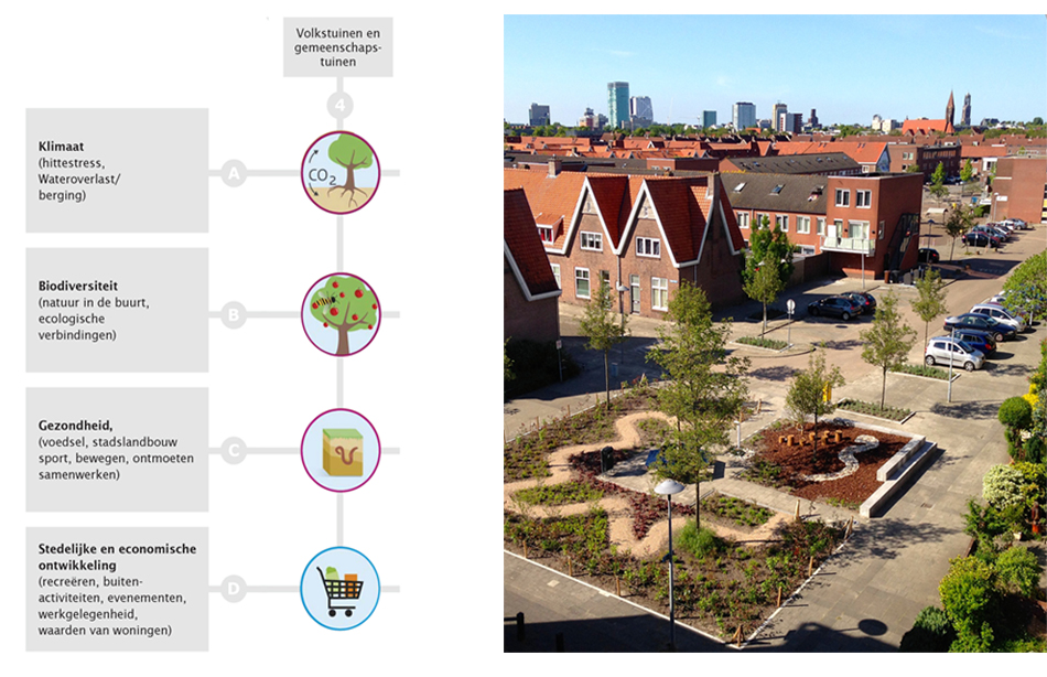 Nature-based-Solutions-Naturvation-Waardecreatie-Duurzaam-Groenplein